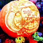 10月31日 蠍座の新月です